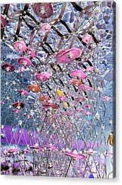 Discs 2 Acrylic Print by Dietrich ralph  Katz