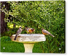 What Is So Great About A Bath? Acrylic Print