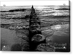 Distant Seagull Baltic Beach Acrylic Print by Andy Prendy