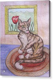 Distracted Cat Acrylic Print by Cherie Sexsmith