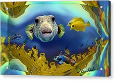 Diver's Perspective Acrylic Print