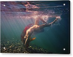 Dives In Beams Acrylic Print