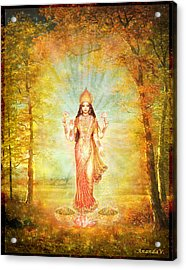 Lakshmi Vision In The Forest  Acrylic Print by Ananda Vdovic