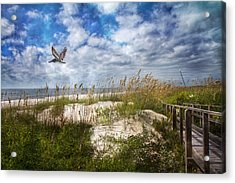 Divine Beach Day  Acrylic Print by Betsy Knapp