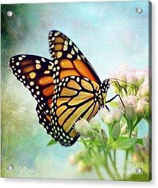 Divine Things Acrylic Print by Kerri Farley