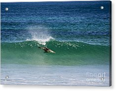 Diving Beneath The Curl Acrylic Print by Mike Dawson