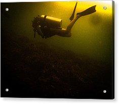 Diving Dark Acrylic Print