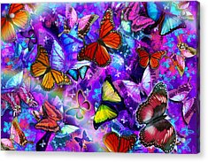Dizzy Colored Butterfly Explosion Acrylic Print by Alixandra Mullins