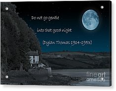 Do Not Go Gentle Acrylic Print by Steve Purnell