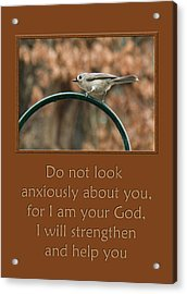 Do Not Look Anxiously About You Acrylic Print by Denise Beverly