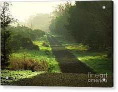 Do We Ever Really Know What Lies Ahead Acrylic Print by Ellen Cotton