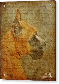 Do You Remember Me? Acrylic Print by Judy Wood