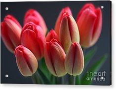 Do You Remember Spring . Acrylic Print