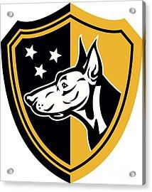 Doberman Guard Dog Stars Shield Acrylic Print by Aloysius Patrimonio