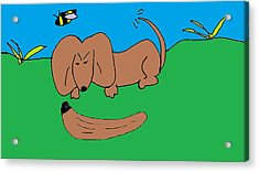 Doc The Dachshund  Acrylic Print by Othen Cummings