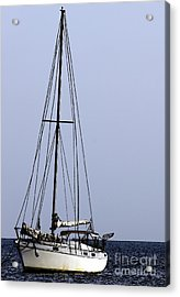 Acrylic Print featuring the photograph Docked At Bay by Lilliana Mendez