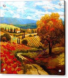 Dodogne Vineyard Acrylic Print by Kanayo Ede