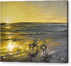 Acrylic Print featuring the painting Dog Beach by Dina Dargo
