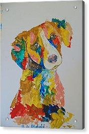 Dog Beautiful Color Acrylic Print by Abdo Allahabi