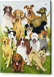 Dog Days Acrylic Print by Pat Scott