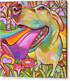 Dog Daze Of Summer Acrylic Print by Robert Phelps