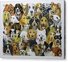 Dog Friends  Acrylic Print