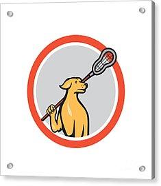 Dog Lacrosse Player Crosse Stick Cartoon Circle Acrylic Print by Aloysius Patrimonio
