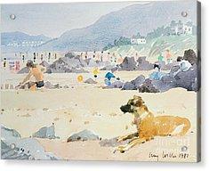 Dog On The Beach Woolacombe Acrylic Print