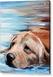 Dog Paddle Acrylic Print