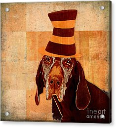 Dog Personalities 11 Cat In The Hat Acrylic Print by Variance Collections