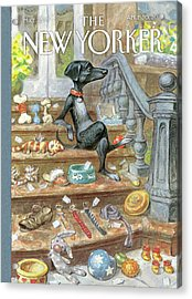 Dog Sitting On The Porch Of A Brownstone Selling Acrylic Print by Peter de Seve