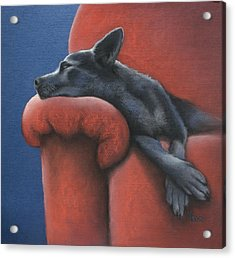 Acrylic Print featuring the drawing Dog Tired by Cynthia House