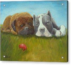 Dog Tired Acrylic Print by Sharon Casavant