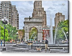 Dog Walking At Washington Square Park Acrylic Print by Randy Aveille