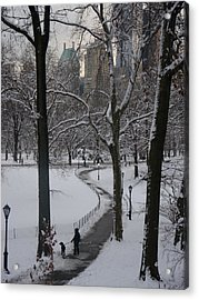 Dog Walking In A Snowy Central Park Acrylic Print