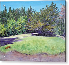 Dog With Bone In Spring Meadow Acrylic Print by Asha Carolyn Young