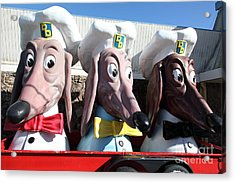Doggie Diner Dogs - 5d20931 Acrylic Print by Wingsdomain Art and Photography