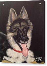 Dogs Are Human's Best Friends Acrylic Print by Brindha Naveen