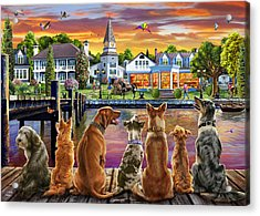 Dogs On The Quay Acrylic Print by Adrian Chesterman