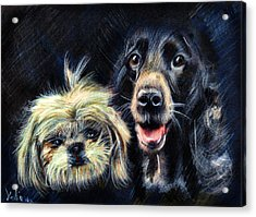 Dogs - Pencil Drawing Acrylic Print