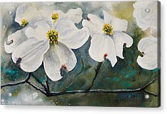 Acrylic Print featuring the painting Dogwood 7 by Bill Jackson