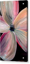Dogwood Bloom Acrylic Print by Mark Moore