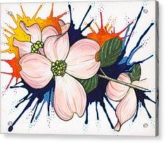 Dogwood Flowers Acrylic Print by Nora Blansett