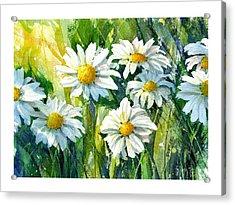 Doin' Daisys Acrylic Print