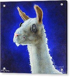 Dolly Llama... Acrylic Print