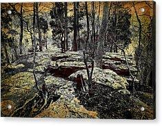 Dolomite Cliff Acrylic Print by Diana Boyd