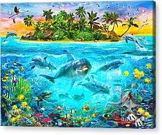 Dolphin Paradise Island Acrylic Print