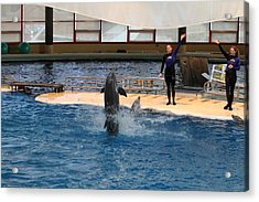 Dolphin Show - National Aquarium In Baltimore Md - 1212101 Acrylic Print by DC Photographer