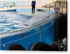 Dolphin Show - National Aquarium In Baltimore Md - 1212135 Acrylic Print