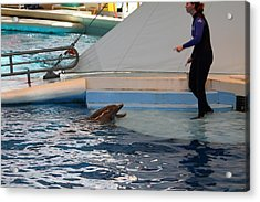 Dolphin Show - National Aquarium In Baltimore Md - 1212195 Acrylic Print by DC Photographer